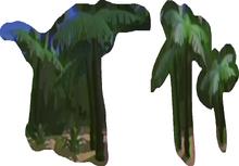 6 Palm Tree