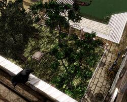 Rabenblick Garten