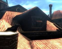 Rabenblick Fenster Haus 7