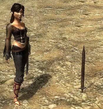 Verlorenes Schwert