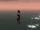 Am Horizont.jpg