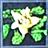 Grave Blossom icon