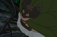 The Bat flies