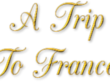 Fan: A Trip To France