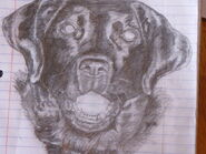 Drawing of people and animals by cierrafrye-d4vbzf2