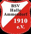 BSV Halle-Ammendorf.png