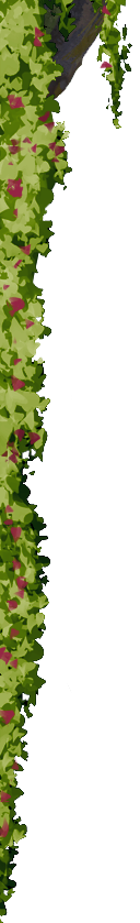 SvK banner 1.2
