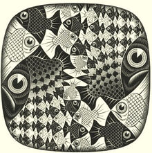 596px-Fish-and-scales