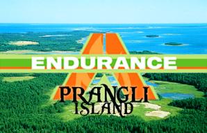 File:Endurance.jpg