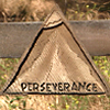 File:Perserverance.png.png