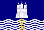 Merlinburgh flag