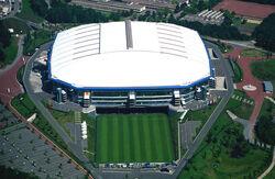 Rinsana arena