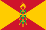 VE-D flag proposal Hans 1