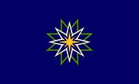 JonGood-MNflag