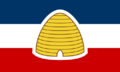 UT Flag Proposal lizard-socks.png