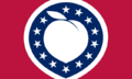 GA Flag Proposal Alternateuniversedesigns.png