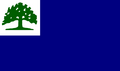 CT Proposed Flag luketheduke03 1.png