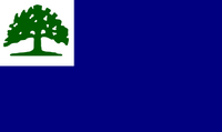 CT Proposed Flag luketheduke03 1