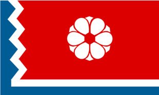 MS Flag Proposal Everythingpossible
