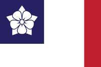 Mississippi New Flag 2