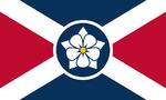 US-MS flag proposal Hans 4