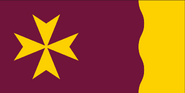 Flag of Queensland (Proposal 1) Golden Wattle