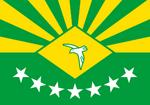 BR-CE flag proposal Hans 1