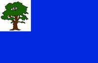 CT Flag Proposal Ben Karnell