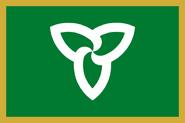 YellowBoarder