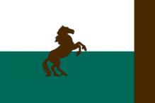 Kentucky flag 2