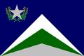 NV Flag Proposal Usacelt.PNG