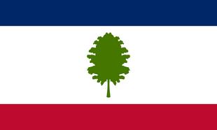 US-MS flag proposal Hans 2