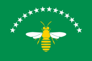CO-RIS flag proposal Hans 2