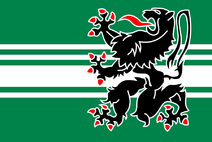 Flag of East Flanders