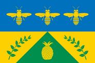 CO-RIS flag proposal Hans 1