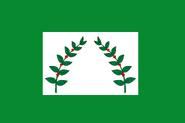 My Proposal for flag of Risaralda Departament