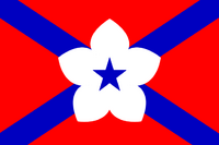 MS Flag Proposal ironchefshark
