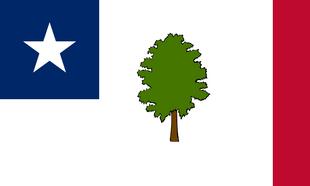 MS Flag Proposal Jack Expo
