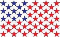 US flag proposal Kolski