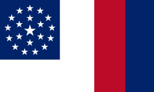 MS Flag Proposal Laqueesha
