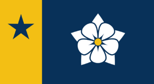 MS Flag Proposal Bmoxey2