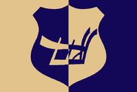 NJ Flag Proposal Peter Orenski