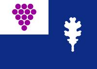US-CT flag proposal Hans 6