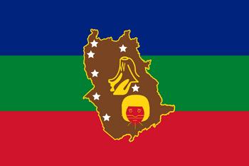 Flag of  Amazonas State