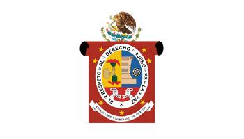 De facto flag of Oaxaca