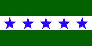 MI Flag Proposal N763