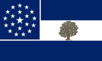 Mississippi State Flag Proposal Remix No 2 By Stephen Richard Barlow
