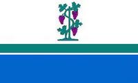 CT Flag Proposal VoronX 1