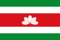 Flag of Boyacá Department