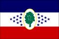 MS Flag Proposal BigRed618.png